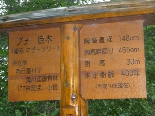 P1080379.JPG